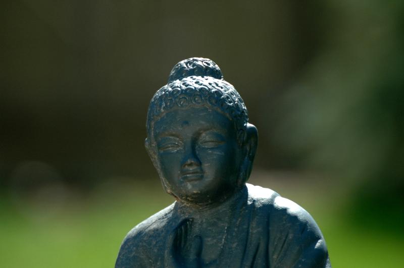 sunny Buddha
